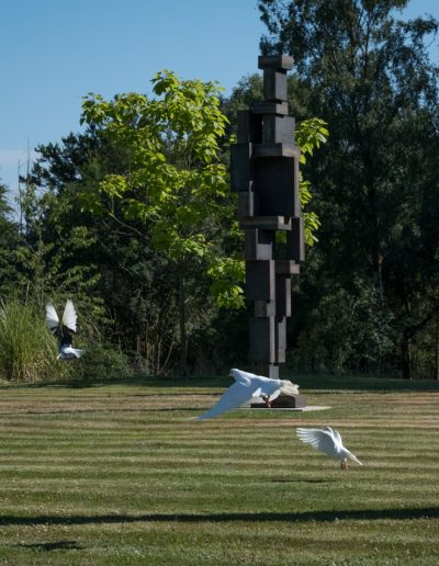 doves flying by sculpture in garden