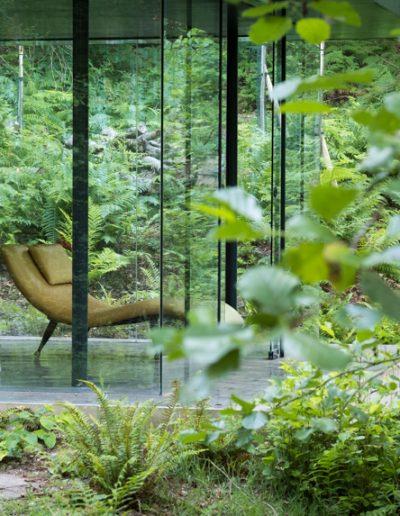 retro chair seen through leaves